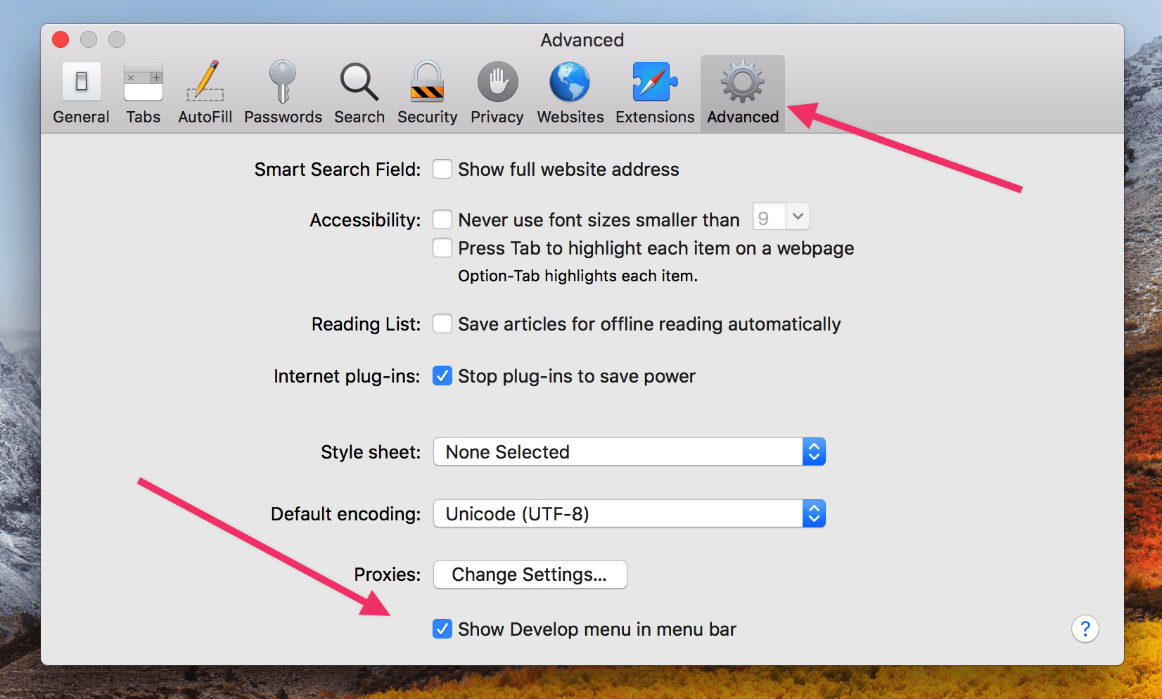 Show Develop Menu in Menu Bar of Safari